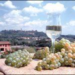 Alla scoperta dei vini di Montecarlo – Lucca